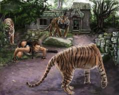 тигры, девушка, фон