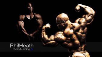 филлип джерод хит, спорт, body building, филлип, джерод, хит, мистер, олимпия, спортсмен, бодибилдер, фил, phil, heath