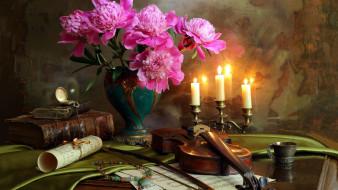 музыка, -музыкальные инструменты, свечи, скрипка, пионы