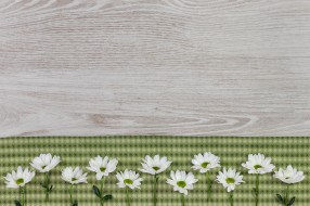 ткань, цветы, фон, хризантемы