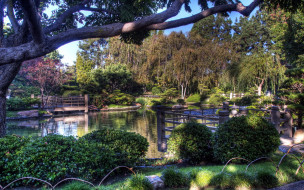 садик, японский, мостик, водоем