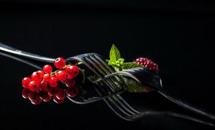 ягоды, вилки, малина, смородина