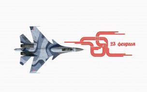 праздничные, день защитника отечества, самолет, полет
