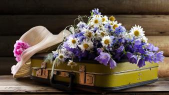 васильки, чемодан, шляпа, колокольчики, ромашки