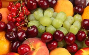 виноград, ягоды, еда, фрукты, персики, черешня