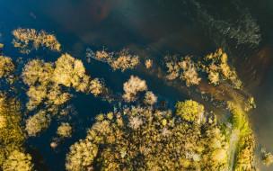 с высоты птичьего полета, природа, реки, озера, вид, сверху, берег, деревья, река