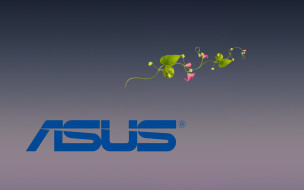 фон, цветы, логотип