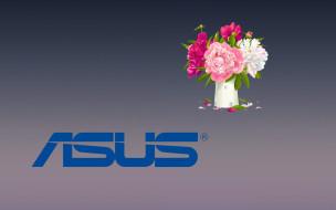 фон, логотип, цветы