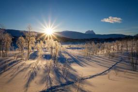 снег, лучи, солнце, горы, зима, деревья, рассвет, небо, лес