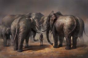 рисованное, животные,  слоны, суд, who, did, стрела, абориген, охотник, слоны