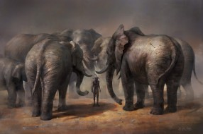 охотник, абориген, стрела, Who did, суд, слоны