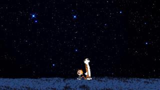 тигр, мальчик, ночь, небо, звезды