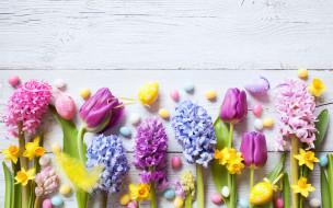 flowers, цветы, eggs, tulips, Пасха, wood, decoration, Happy, spring, яйца крашеные, крокусы, тюльпаны, нарциссы, Easter, colorful