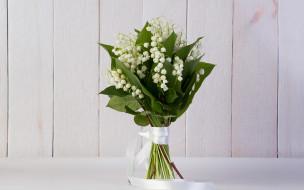 цветы, ландыши, белый