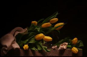 натюрморт, цветы, букет, тюльпаны