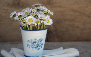 цветы, маргаритки, wood, ваза