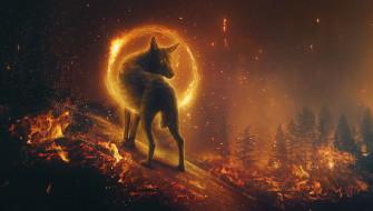 легенда, портал, волк, лес горит, ночь, извне, сказочный мир, волшебство, красота, фантастика, в огне, пожар, фантазия, мистика