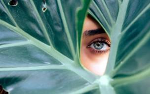 разное, глаза, девушка, лист, глаз