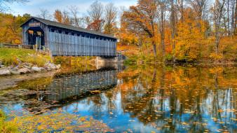природа, мост, река, деревья, пейзаж, лес