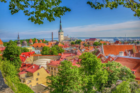 old town,  tallinn,  estonia, города, таллин , эстония, простор