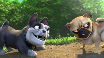мультфильмы, the nut job 2, the, nut, job, 2