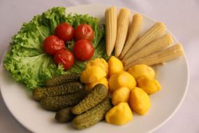 помидоры, огурцы, зелень, консервация, еда, томаты, соленья, кукуруза