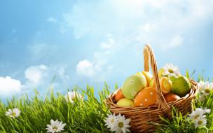 flowers, небо, decoration, ромашки, Easter, весна, корзина, Happy, яйца крашеные, eggs, spring, солнце, цветы, Пасха, трава
