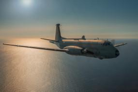 авиация, боевые самолёты, морской, разведчик