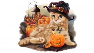 праздничные, хэллоуин, взгляд, тыква, фон, кот