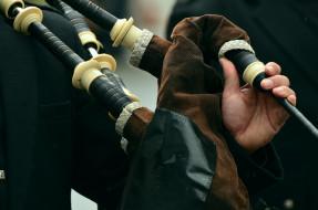музыка, -музыкальные инструменты, инструмент