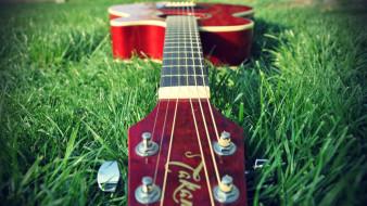 гитара, трава