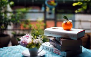 мандарин, книги