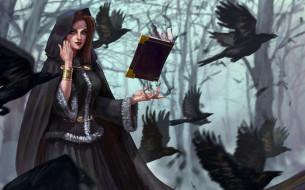 фэнтези, девушки, вороны, магия, капюшон, арт, деревья, книга, птицы, ведьма, лес, фэнтази