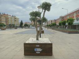 города, - улицы,  площади,  набережные, деревья, улица, город