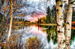 природа, реки, озера, облака, небо, осень, кусты, деревья, река