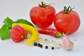 еда, овощи, помидоры, перец, чеснок, базилик, соль