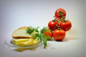 еда, помидоры, сыр, зелень, хлеб, томаты