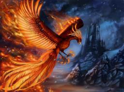 птица, крылья, скалы, пламя, фэнтези, феникс, арт, замок
