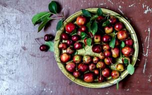миска, вишня, ягоды