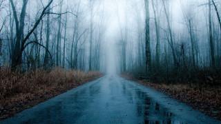 дорога, шоссе, осень, мокрая