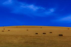 природа, поля, стога, поле, небо