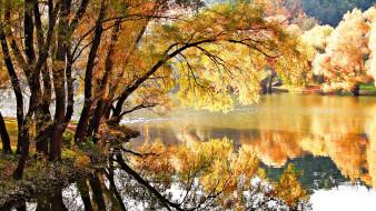 отражение, река, вода