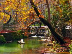 листопад, пруд, осень