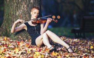 музыка, -другое, девушка, скрипка, листва, природа