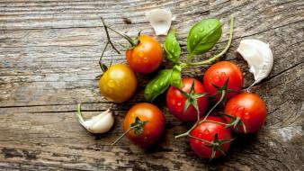 помидоры, чеснок, базилик, томаты