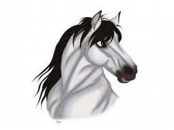 обои для рабочего стола 3600x2689 векторная графика, животные , animals, фон, лошадь