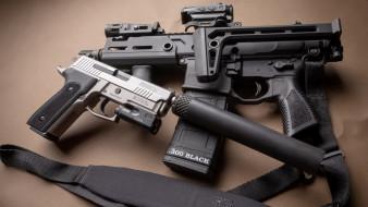 глушитель, gun, Sig Sauer, P229, П229, Elite, pistol, ар-15, silenser, карабин, carabine, Сиг Зауер, weapon, Sig P229, ar-15