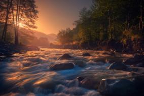 река, вода, дерево, солнце