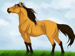 лошадь, фон