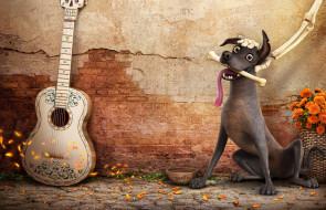 фон, взгляд, собака, гитара, косточка